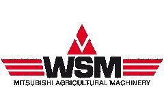 WSM-Logo