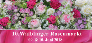 Waiblinger Rosenmarkt 2018